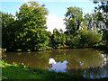 TQ0718 : Mill Pond, Nutbourne by Simon Carey