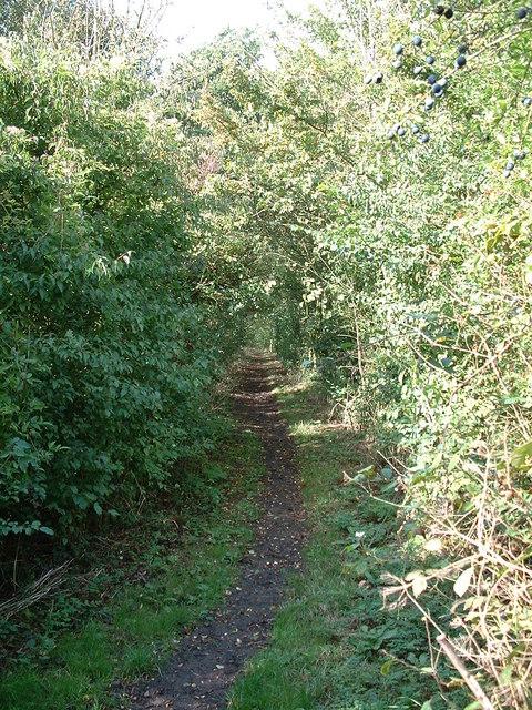 Middy Railway Footpath