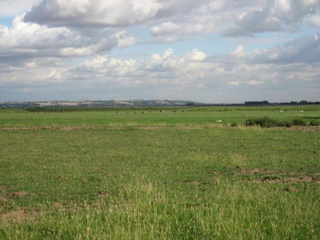 fertile land - photo #2