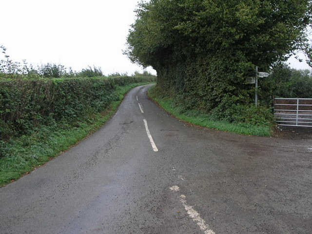 Narrow Lane And Tall Hedge C Michael Patterson