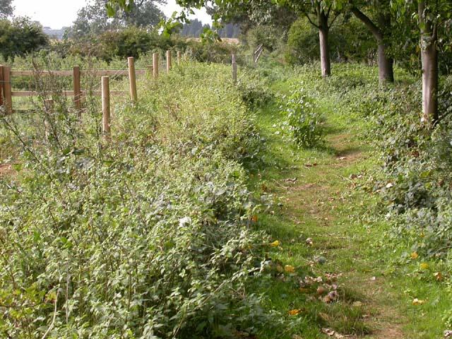 Footpath near Pitsford Road
