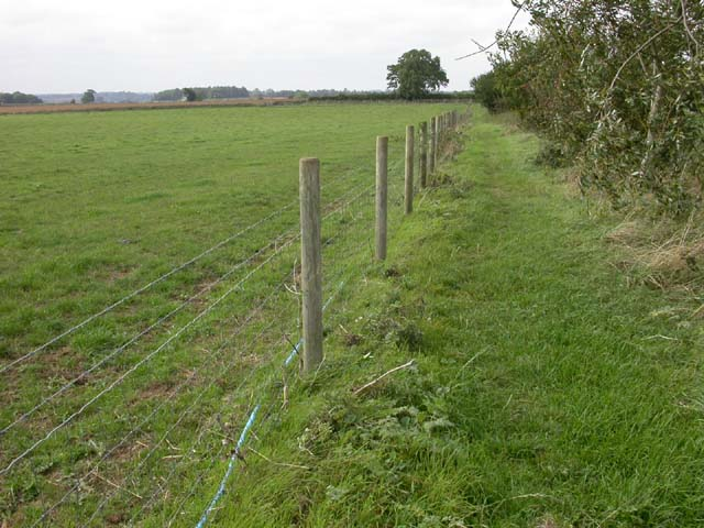 Fenced Footpath