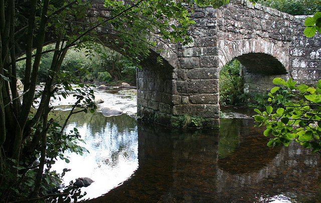 Under Fingle Bridge