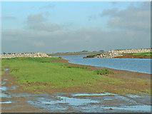 SE8823 : Alkborough Flats Flood Defences by Gordon Kneale Brooke