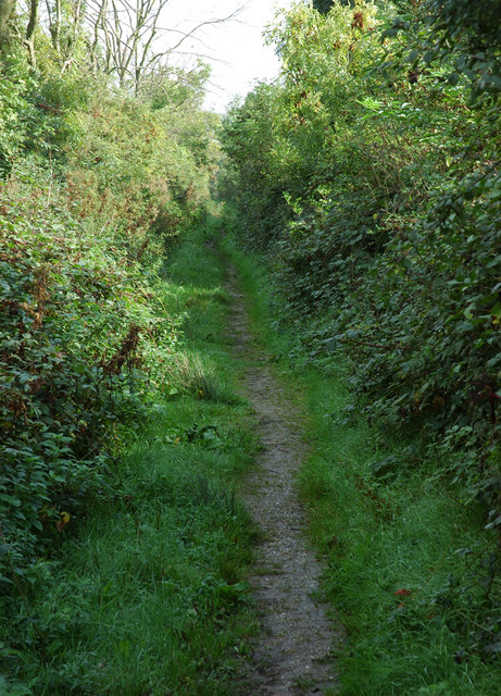 Footpath, Meadow Lane