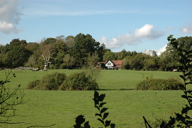 Grazing Field, Wainsford Road, Pennington