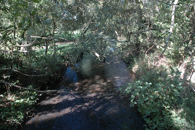 Avon Water, Wainsford Road, Pennington