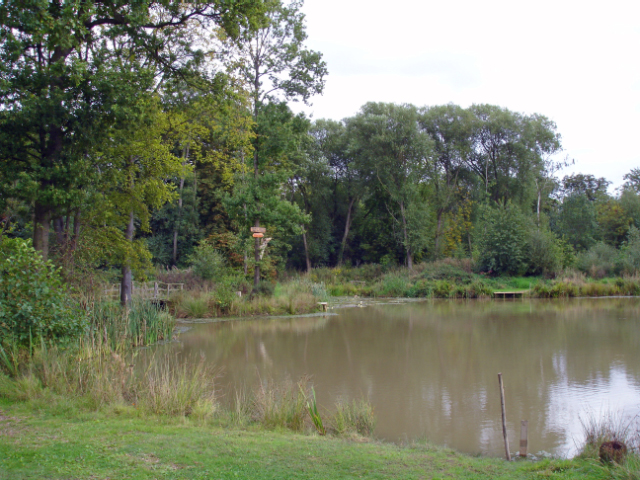 Capenhurst fishing pond in big wood mike harris for Private fishing ponds near me