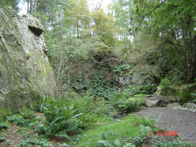 Disused quarry in Tollohill Wood