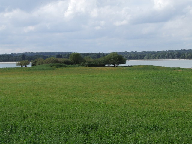 Hanningfield View from Rawl Hide.