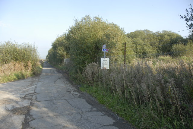 Cycle Path Junction in Pembrey Country Park