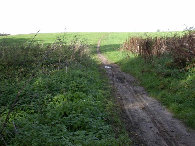 Footpath across the Heath