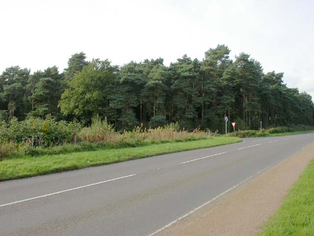 Round Oak Plantation