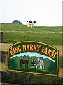 NY5447 : King Harry Farm by wfmillar