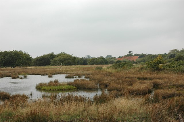 Lagoon, Lymington Marshes