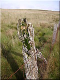 SD6782 : Fence, Crag Hill by Michael Graham