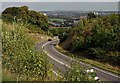 TL0521 : Chaul End Road by Richard Thomas