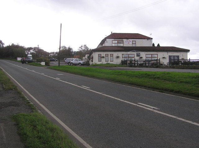 The Otter : Bildershaw Bank  (A68)