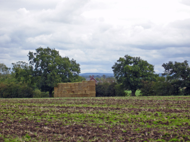 Edleston: harvest home