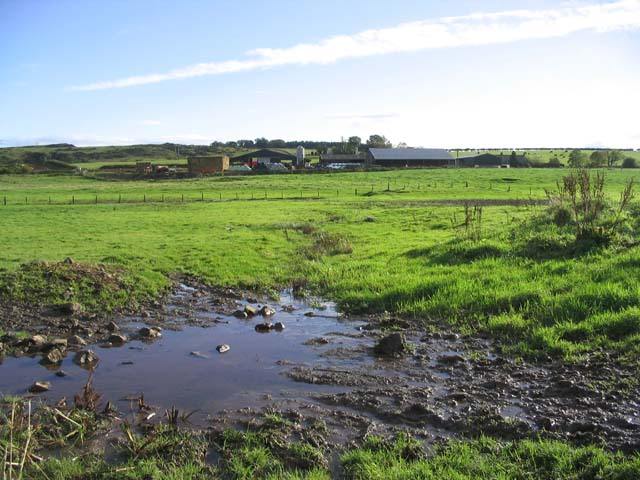 Whitrighill Farm from a muddy pasture field