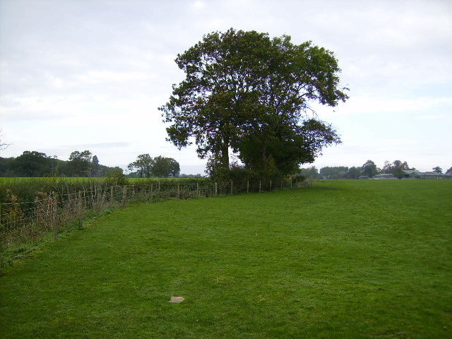 The little used footpath 500m south of Sheriff Hutton Hall