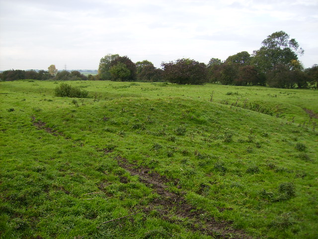 Earthworks of the Medieval Village of East Lilling