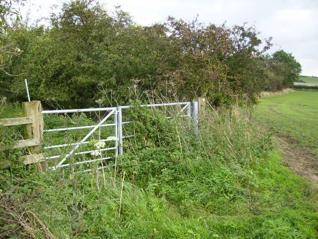 Bridleway south of Stittenham Wood