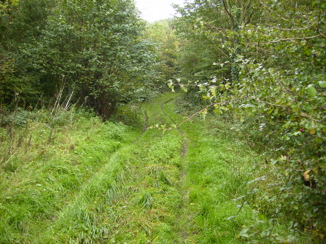 Footpath leading into Stittenham Wood