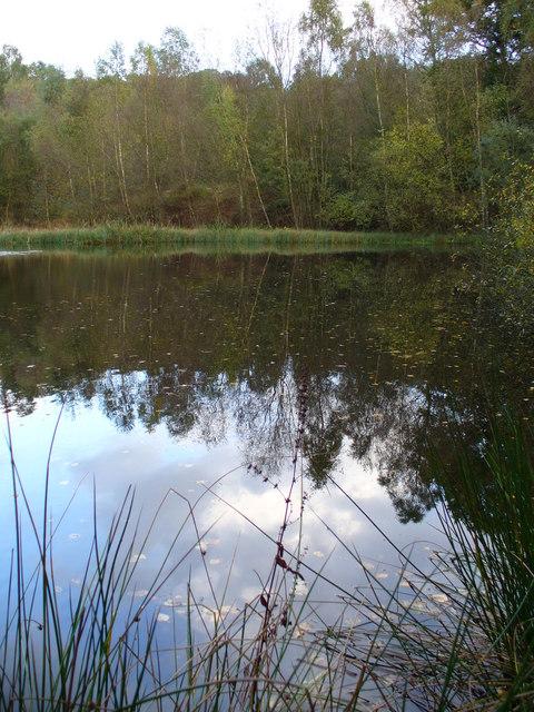 Pond South of Redford