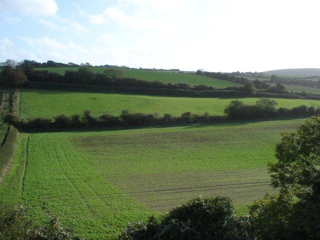 Fields south of Carisbrooke Castle, IOW