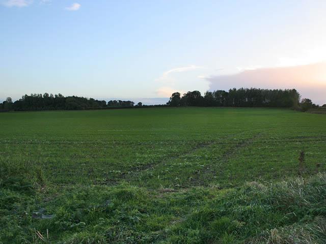 Farmland off Trent Lane