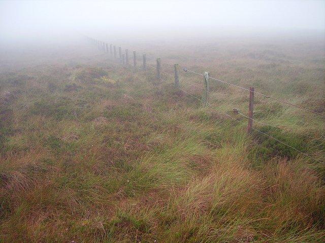 Fence, Ewe Hill