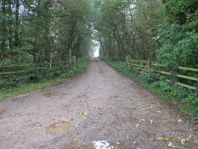 Path to Shaw Wood