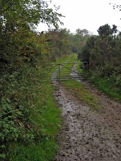 Farm road to Craigfin
