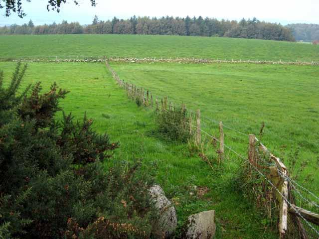 Fields near Auchalton