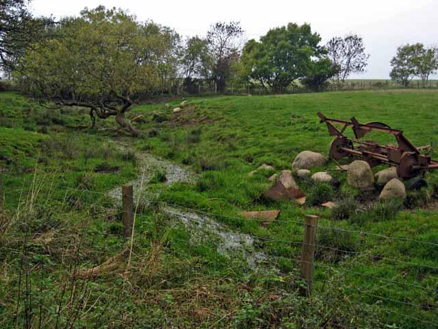 Field at Dyke, near Straiton