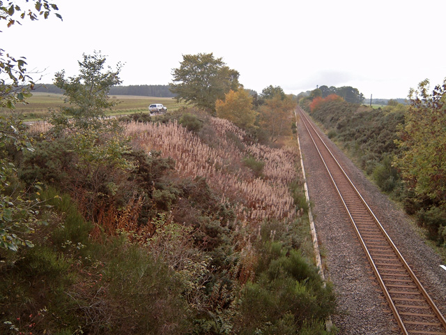 Railway cutting west of Forres