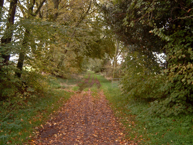 Footpath to Kintessack from near Moy House
