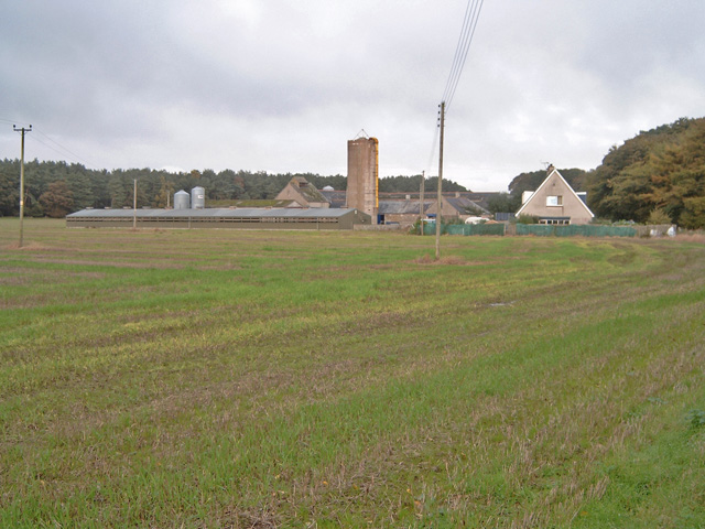 Wellside farm
