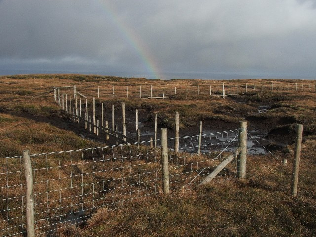 Fences on Cray Moss.