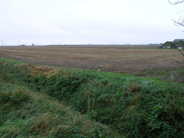 Flat Fen Field