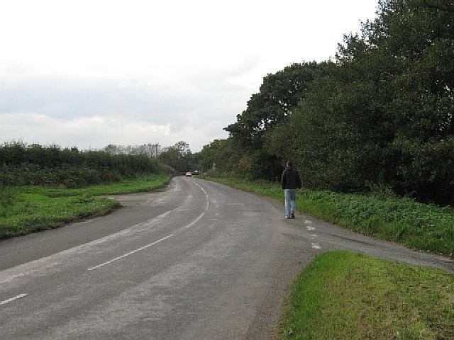 A Lonely Walker