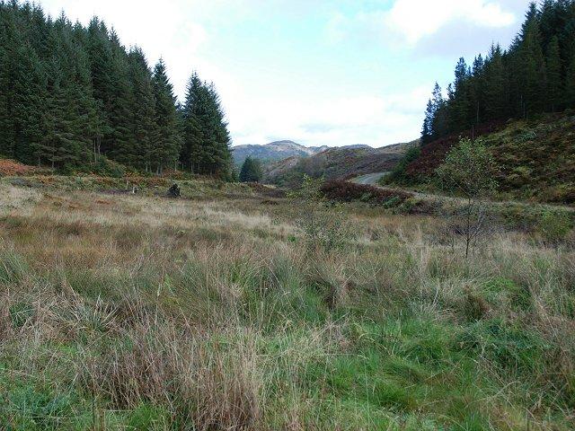 On the road around Loch Glashan