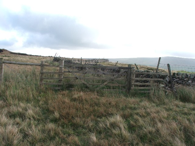 Gate and Drystone Wall on Cray Moss.