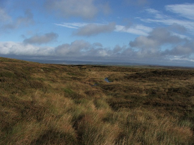 Moorland above Middle Tongue.