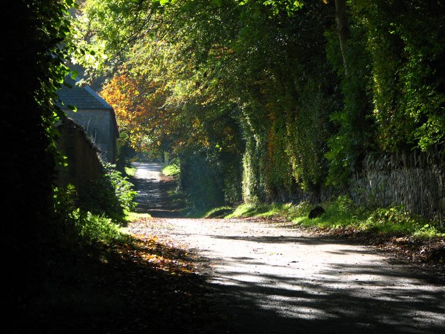 Mortonhall estate road