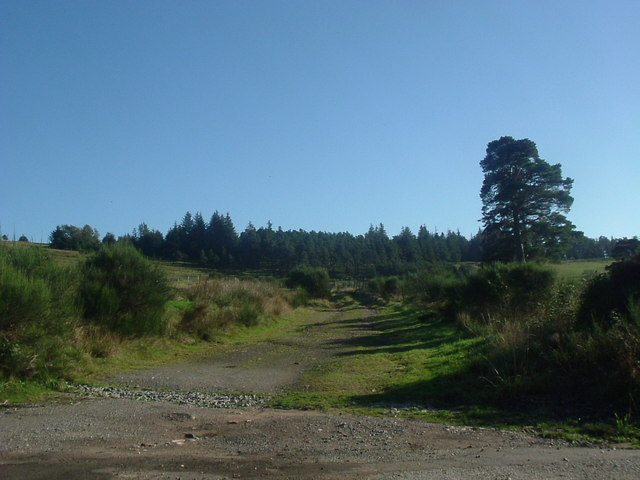 Track to Dunswell (Oct)