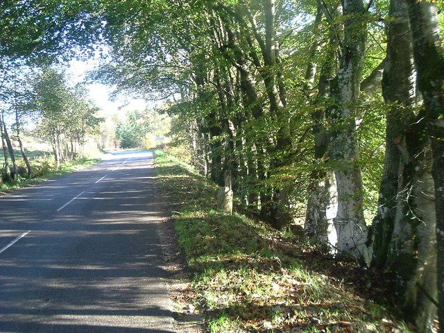 Milestone by B9119  near Drumlasie
