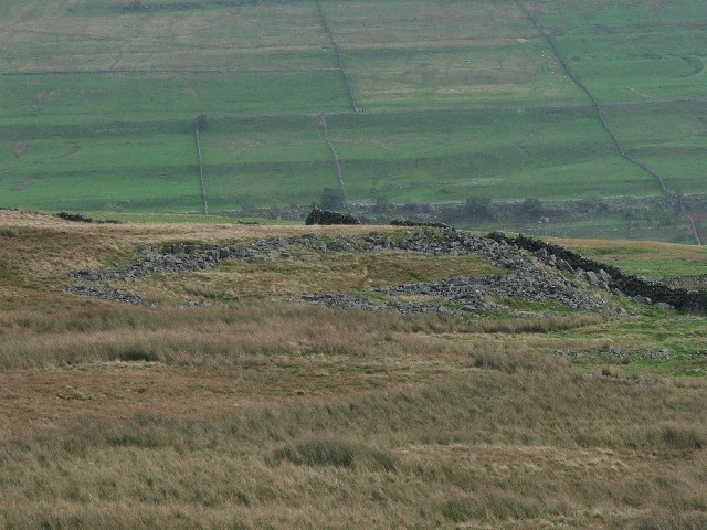 Derelict Sheepfold at Slades
