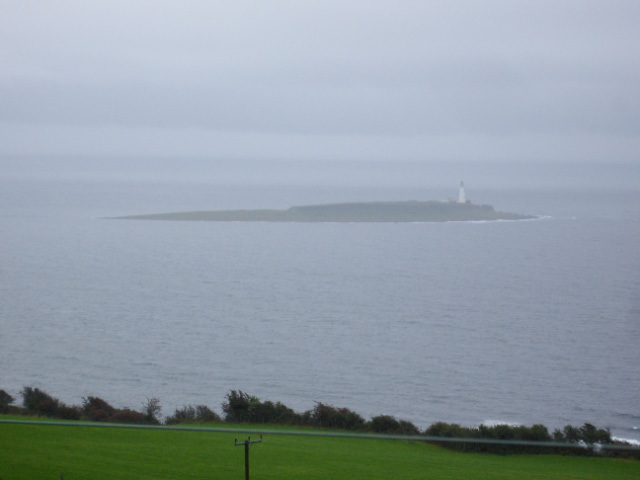 Pladda on a rainy day